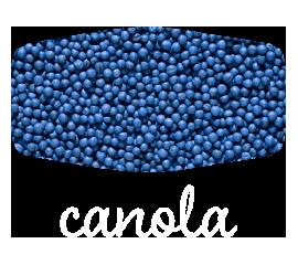 canola-home