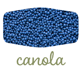 green-canola