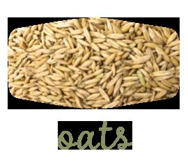 green-oats-2