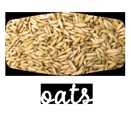 oats-3