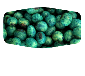 soybeans-home-2